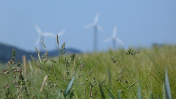 OZE – energetyka wiatrowa