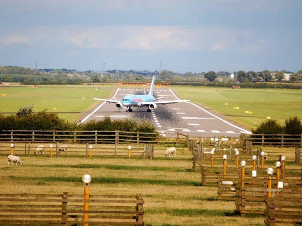 samolot lotnisko Leonardo