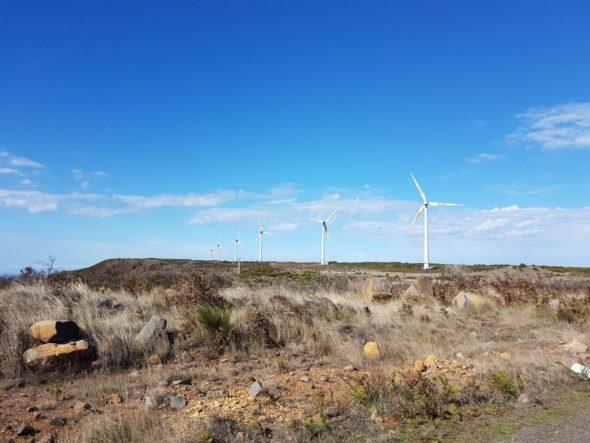 OZE wiatraki środowisko