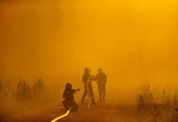 Strażacy z Polski gaszą pożary w Szwecji