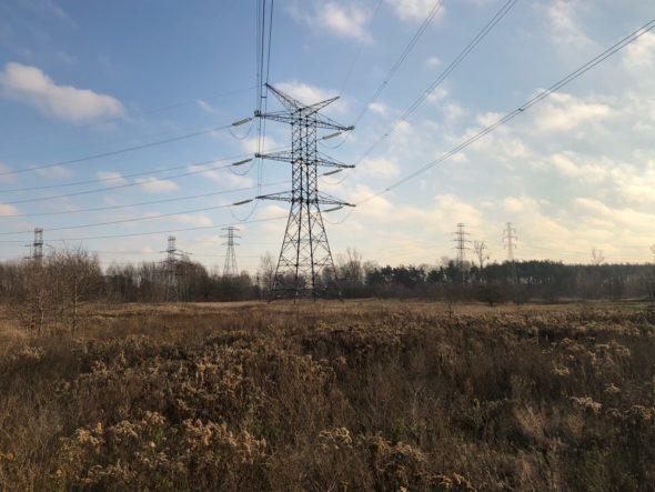 Linia elektroenergetyczna na Rembelszczyźnie. Fot. Bartłomiej Sawicki/BiznesAlert.pl