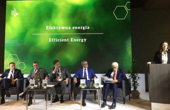 Efektywna energia podczas EECGreen w Katowicach. Fot. BiznesAlert.pl