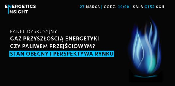 Energetics Insight: polski rynek gazu i jego perspektywy patronat