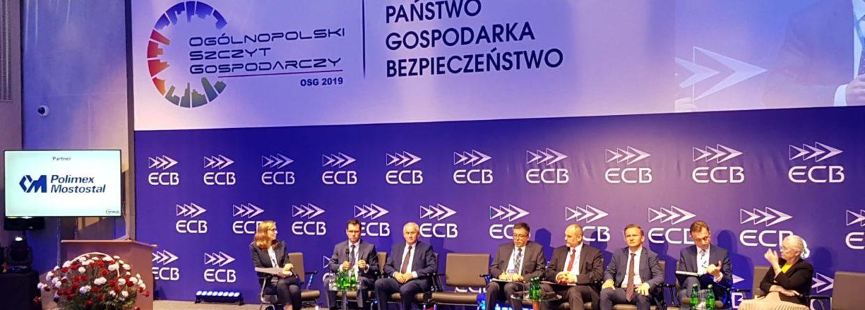OSG 2019 w Siedlcach. Fot. Piotr Stępiński/BiznesAlert.pl