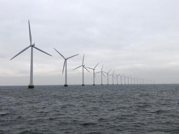 Morska farma wiatrowa Middelgrunden w pobliżu Kopenhagi. Fot. Bartłomiej Sawicki/BiznesAlert.pl