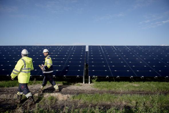 Park słoneczny Statkraft na obrzeżach Emmen w Holandii fot. Statkraft