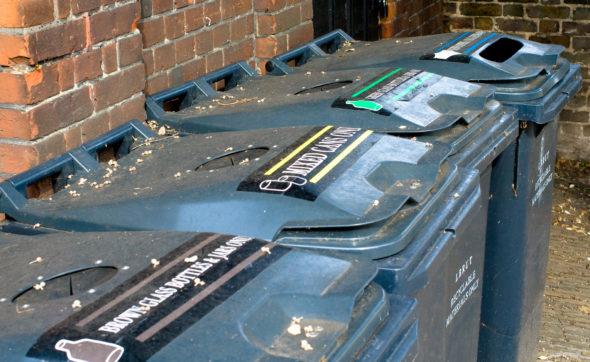 Odpady recykling Flickr 2