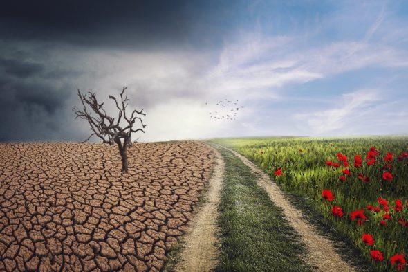 Zmiany klimatu fot. Enriquelopezgarre/Pixabay