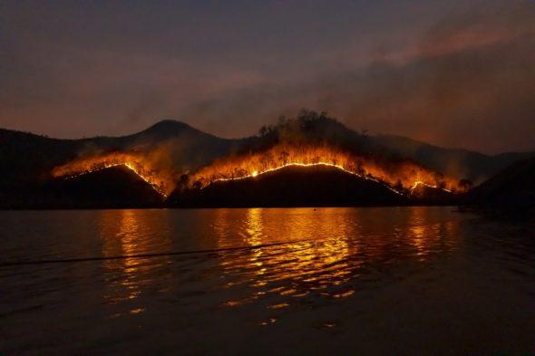 Pożary w Australii fot. Sippakorn Yamkasikorn/Pixabay