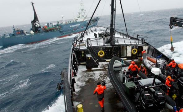 Akcja SSCS przeciwko wielorybnikom. Źródło: Flickr