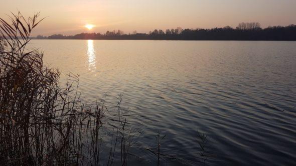 Jezioro Kiekrz w Wielkopolsce. Fot. Mirosław Perzyński