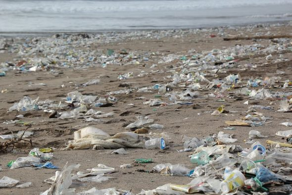 Plastikowe śmieci na plaży. Źródło- PXfuel