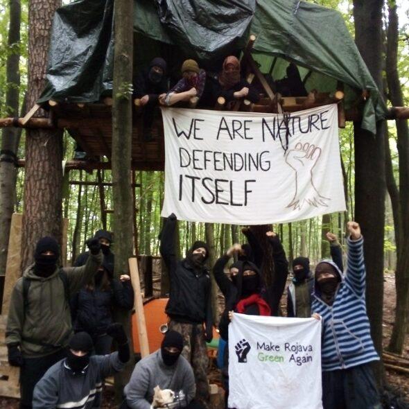 Ekolodzy Danneröder Forst. Fot. Dannenröder Waldbesetzung/Twitter