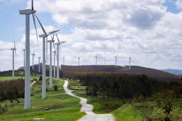Fot. Lądowa farma wiatrowa. Źródło: Freepik.com.