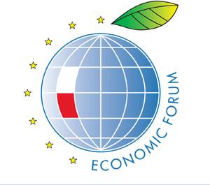 FE logotypy 02,2012