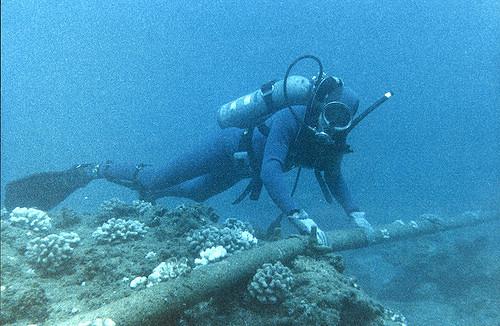 Kabel podmorski Flickr