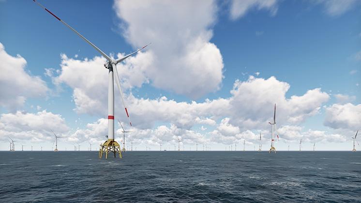 Morska farma wiatrowa Wikinger. Źródło: Iberdrola