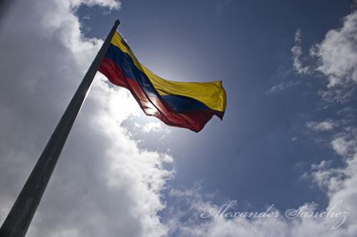 wenezuela flaga