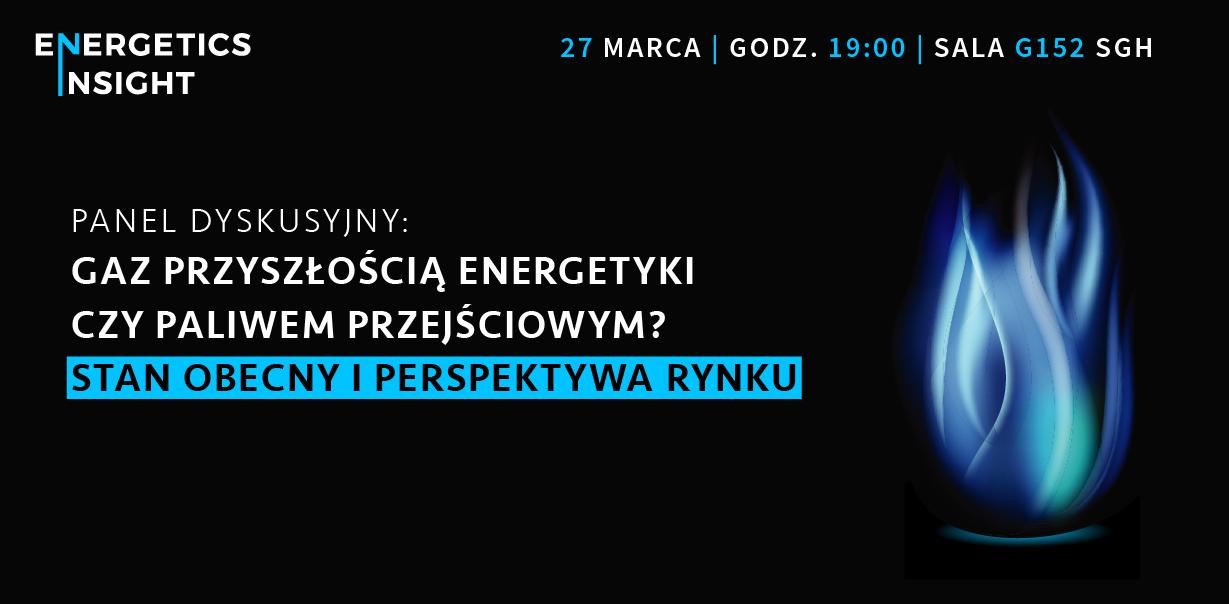 Energetics Insight: Polski rynek gazu i jego perspektywy
