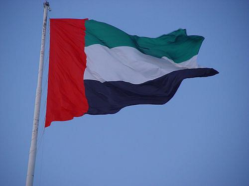 zea flaga zjednoczone emiraty arabskie