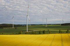 Farma wiatrowa Potęgowo. Fot. PZE